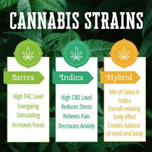 Weed Strains Instagram Post