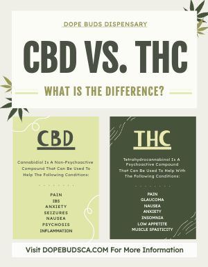 CBD Dispensary Flyer