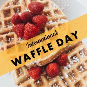 Waffle Instagram Update