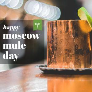 Moscow Mule Instagram Update