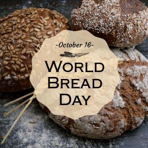Bread Instagram Update