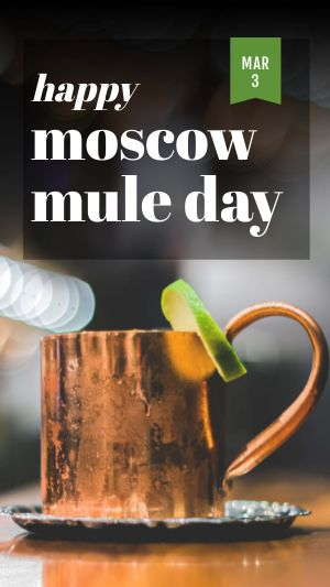 Moscow Mule Day Instagram Story