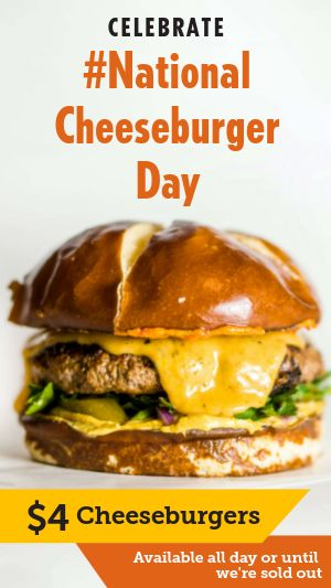 Cheeseburger Instagram Story